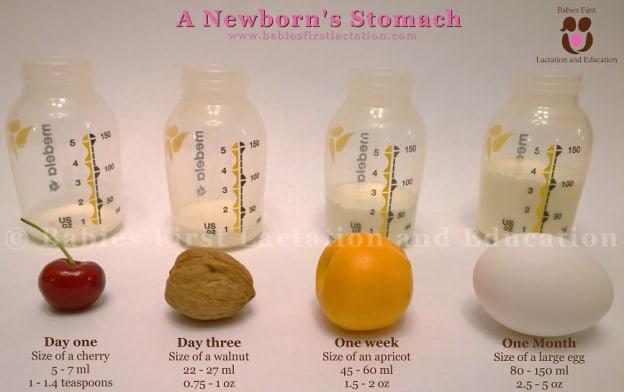 velicina stomaka kod beba